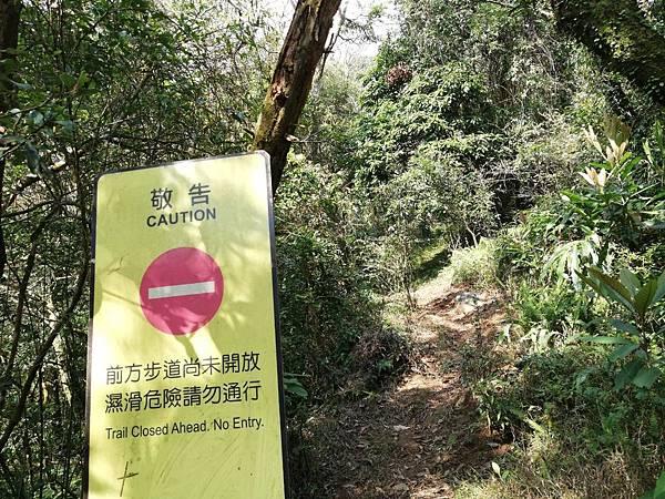 陳天喜墓 (75).jpg
