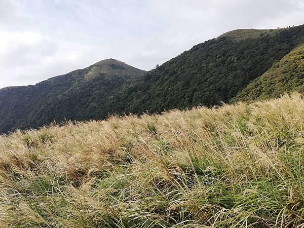 陳天喜墓 (85).jpg