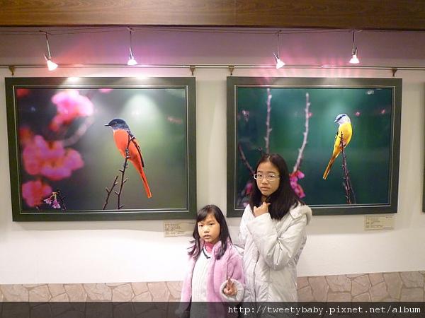 郭耿中鳥類攝影展 062.JPG