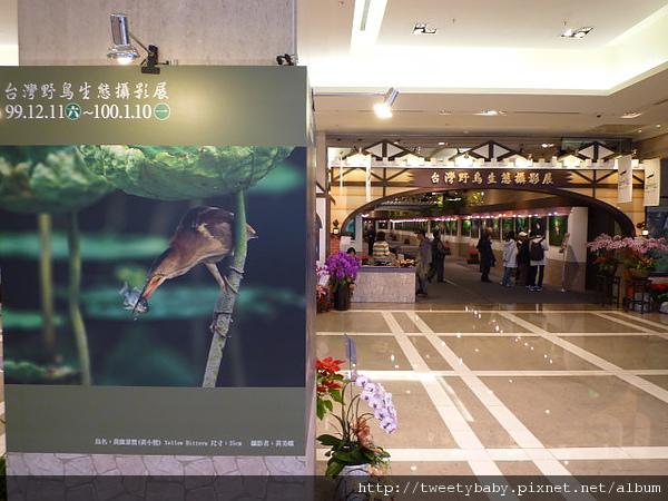 郭耿中鳥類攝影展 010.JPG