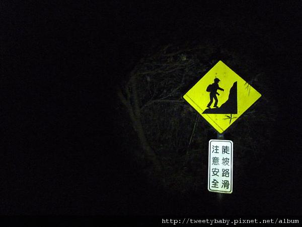 中正山夜景 068.JPG