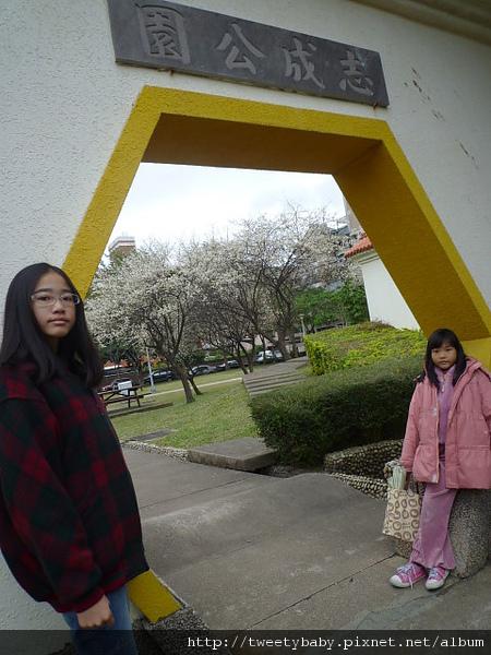 志成公園梅花.泉源公園泡腳池 058.JPG