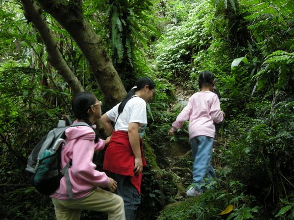 猴山岳,猴山岳前峰 163.JPG