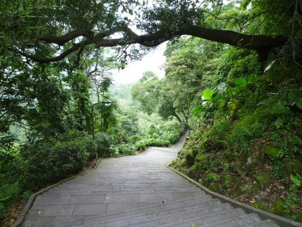指南宮步道 038.JPG