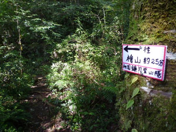 福巴越嶺.檜山 175.JPG