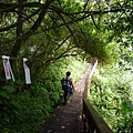 福巴越嶺.檜山 301.JPG