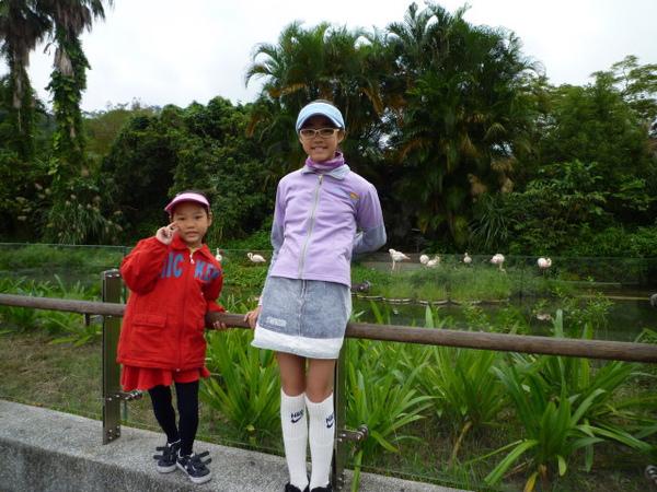 木柵動物園 001.JPG