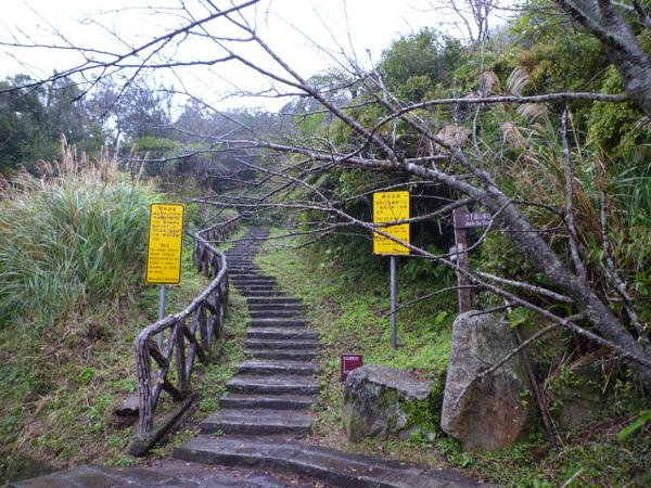 竹子湖上中正山 004.JPG