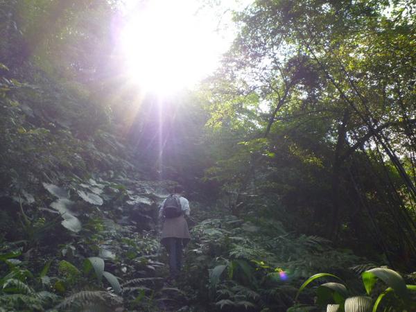 紫微聖母環山步道 085.JPG