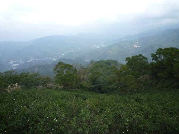 紫微聖母環山步道 117.JPG