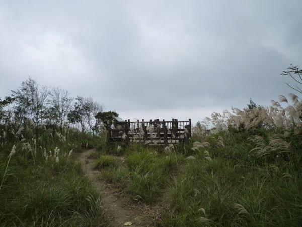 紫微聖母環山步道 178.JPG