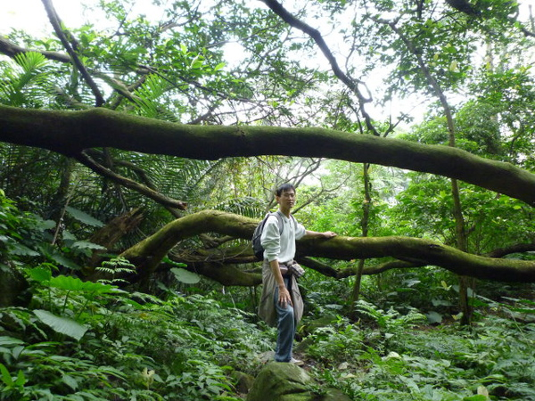 紫微聖母環山步道 215.JPG