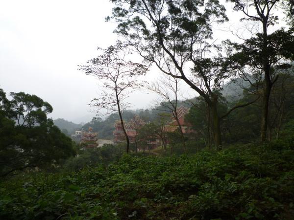 紫微聖母環山步道 243.JPG