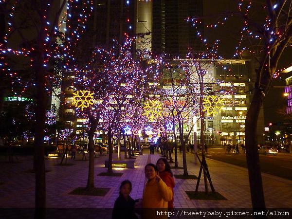 2010台北燈會 026.JPG
