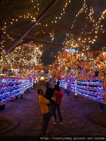 2010台北燈會 054.JPG