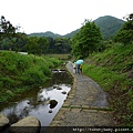 大溝溪步道.碧山巖.鯉魚山.白石湖吊橋 040.JPG
