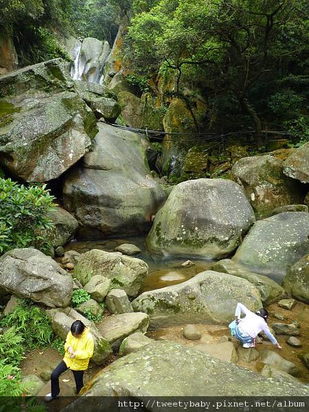 大溝溪步道.碧山巖.鯉魚山.白石湖吊橋 089.JPG