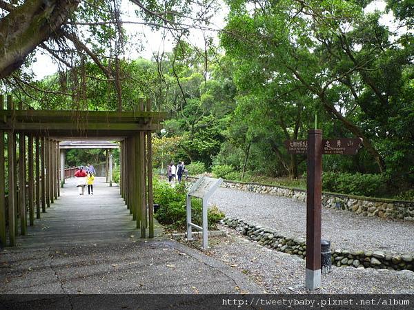 大溝溪步道.碧山巖.鯉魚山.白石湖吊橋 206.JPG