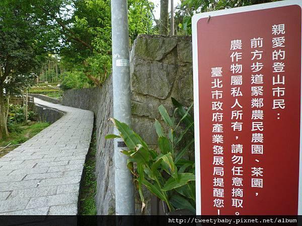 樟湖步道.樟樹步道.魚民日式料理 082.JPG