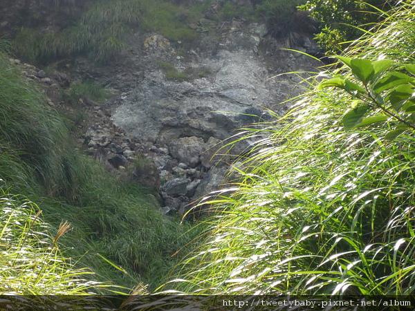 冷水坑公共溫泉.七股山登山口.牛奶湖 075.JPG