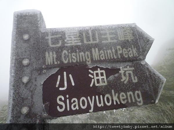 七星山下雪了 067.JPG
