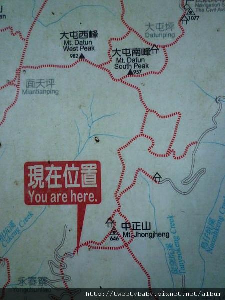 中正山夜景 019.JPG
