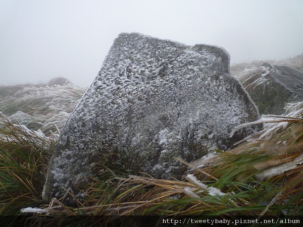 七星山下雪了 056.JPG