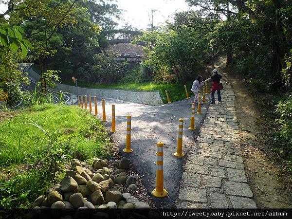 樟湖步道.樟樹步道.魚民日式料理 041.JPG