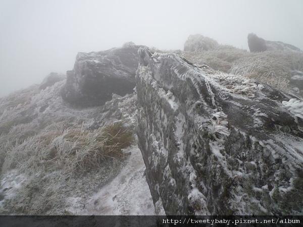 七星山下雪了 128.JPG