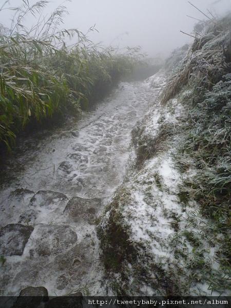 七星山下雪了 139.JPG