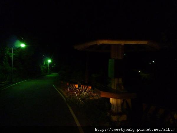 中正山夜景 072.JPG
