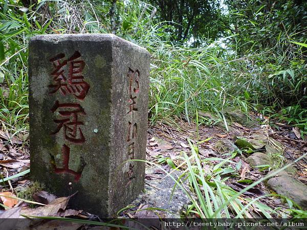 石碇雞冠山 091.JPG