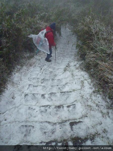 七星山下雪了 149.JPG