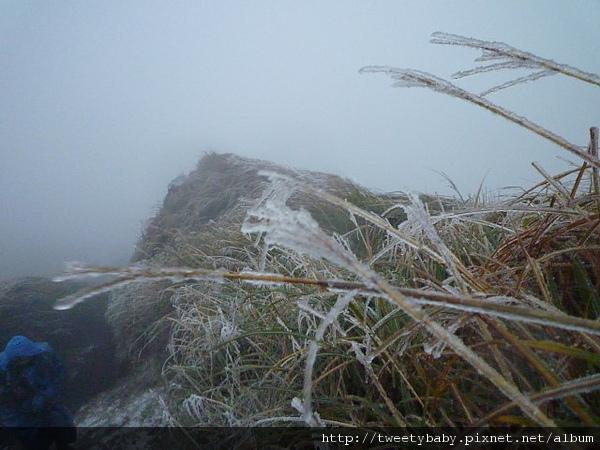七星山下雪了 142.JPG