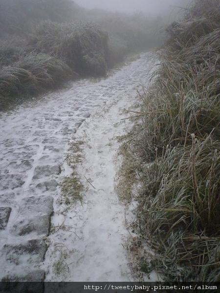 七星山下雪了 034.JPG