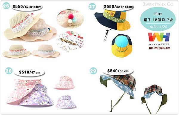 Hat (Blog價).jpg