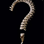 osteoporosis-awareness-question-mark-small-34039