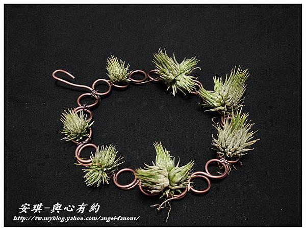 DIY 手作空氣鳳梨花圈7 (1).jpg