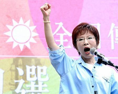 洪秀柱參選總統