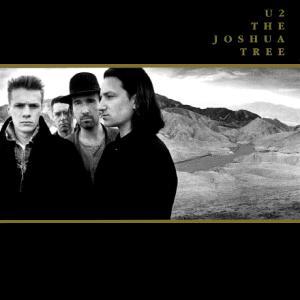 The Joshua Tree.JPG
