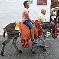 米哈斯白色小鎮的代表特色-驢.jpg