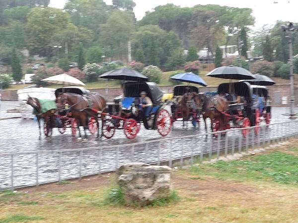 7-2羅馬競技場馬車.jpg