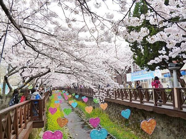1-1韓國慶州余佐川橋 (2)
