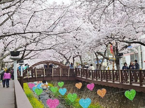 1-1韓國慶州余佐川橋 (5)