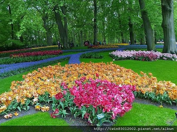 0H庫肯霍夫花園  (0-3).jpg