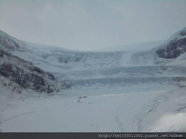 2加西哥倫比亞大冰原 (3).jpg