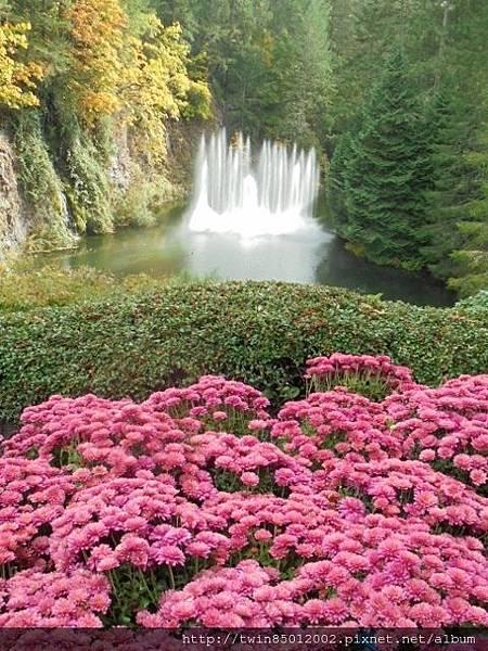 0t加拿大維多利亞布查花園 (21).jpg
