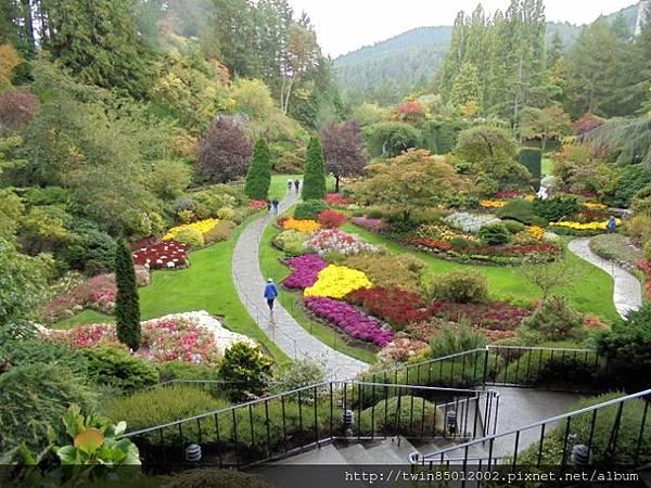 0t加拿大維多利亞布查花園 (34-1).jpg