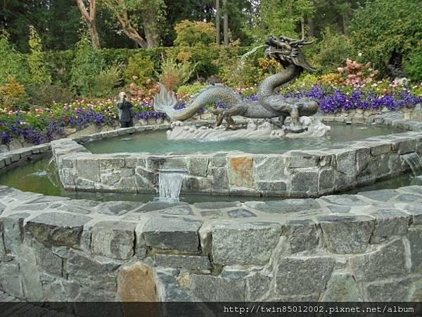 0t加拿大維多利亞布查花園 (36).jpg