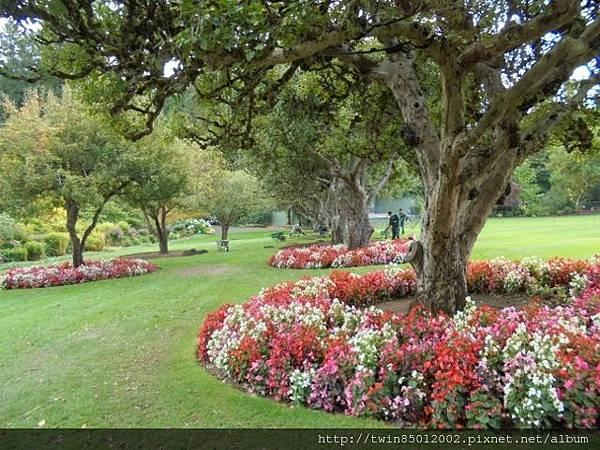 0t加拿大維多利亞布查花園 (37).jpg